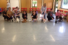 Cheshire Dog School Gallery