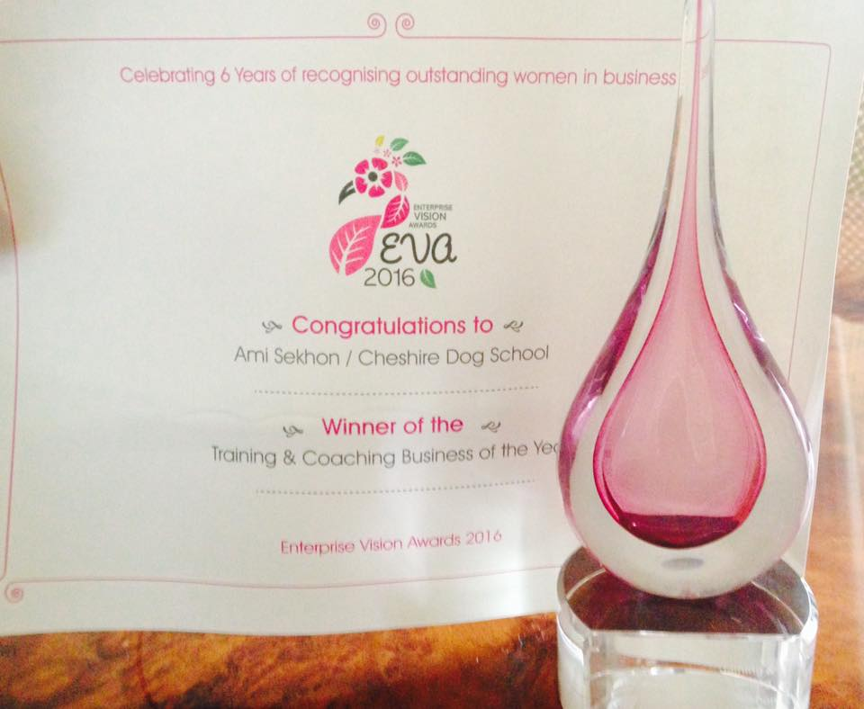 EVA Awards winner