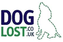logo-dog_lost